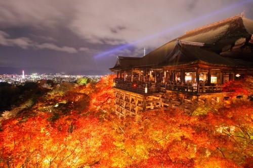 清水寺紅葉のライトアップ