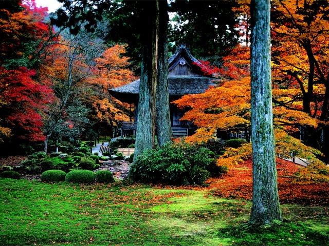三千院の紅葉