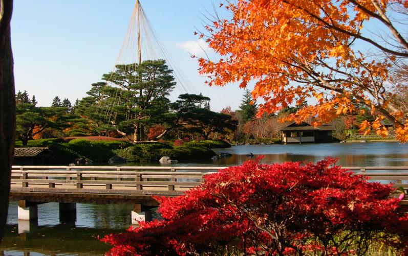 国営昭和記念公園3
