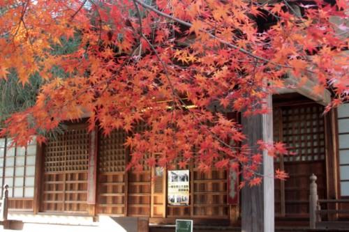 天台宗別格本山 中院2