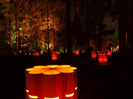 野宮神社6