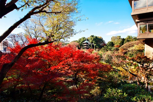 ホテル椿山荘東京2