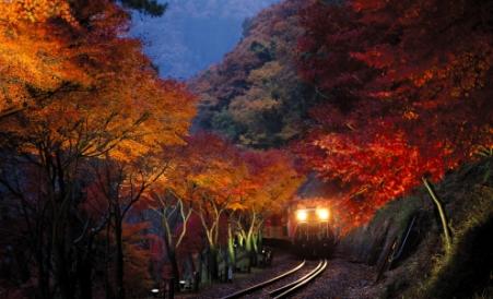トロッコ列車2