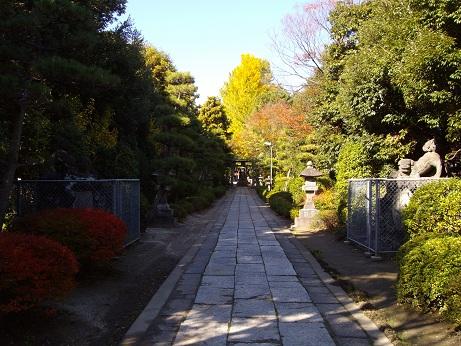 春日部八幡神社2