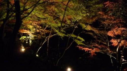 生田緑地4