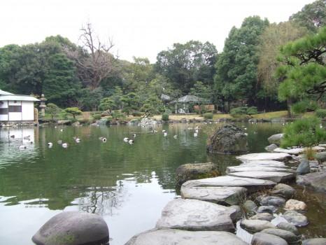 清澄庭園の石