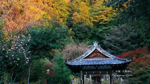 大豊神社1