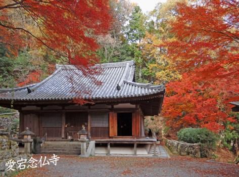 愛宕念仏寺3
