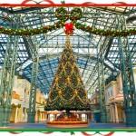 ディズニー・クリスマス1