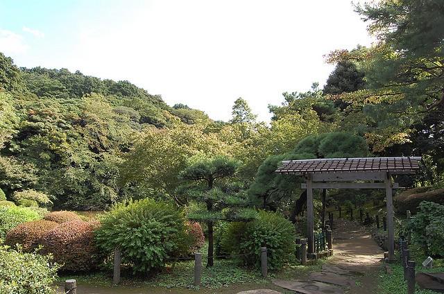 新江戸川公園