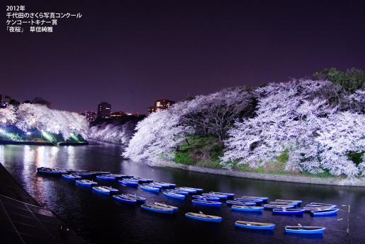千鳥ヶ淵公園の夜桜のライトアップ