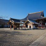 太田区池上本門寺の桜の開花予想2015。珍しいササベザクラも