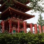 高幡不動尊金剛寺の桜の開花予想2015!夜桜のライトアップは?
